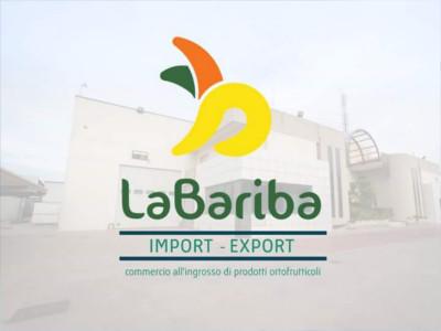 bariba2